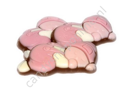 Dragee Chocolade Baby's Roze/Wit